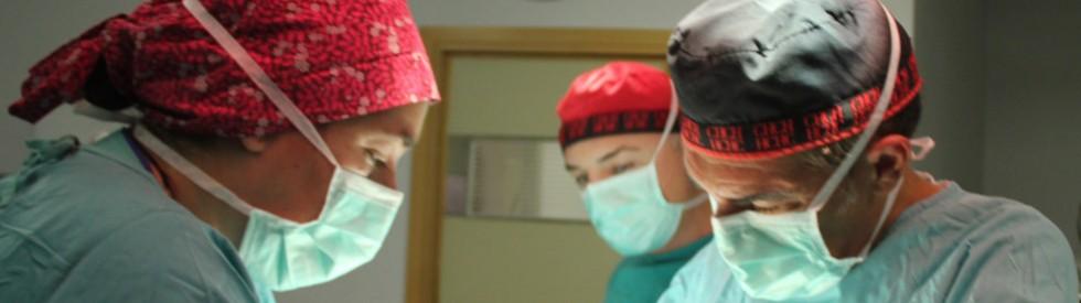 Equipo de cirugia estetica Dr. Puig en Valencia y Gandia